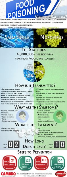 What Causes a Foodborne Illness: Virus or Bacteria? #foodsafety #infographic