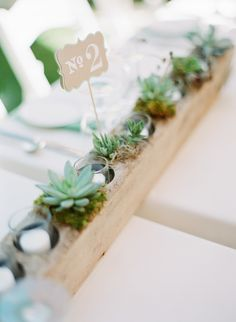 Rows of alternating Succulents and Votives - so pretty | See the wedding on SMP - http://www.StyleMePretty.com/2014/01/09/bohemian-inspired-california-wedding-at-holly-farm/ Lexia Frank Photography