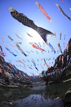 杖立温泉鯉のぼり-1 : ♪PIERRE♪CEOのBREEな生活
