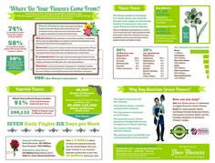 Slow Flowers Infographics