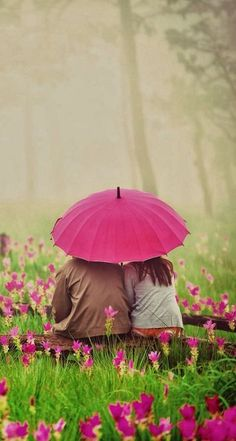 Spring rain...together