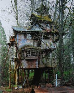 """the """"Tin Man's"""" tree house"""