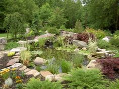 landscaping around a small pond | lot of our landscaping is around watergardens and here are three ...