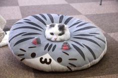To understand pillow you must be one with pillow.