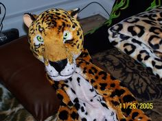 """Me seen as my Leopardy Self En'Bed in my Room in Sioux Falls South Dakota. One on my """"Matrons"""" Took My Photo."""