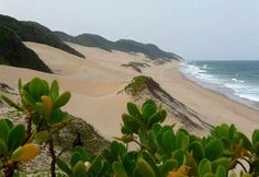 The unspoilt coastline of Kosi Bay, South Africa. A great holiday destination! :)