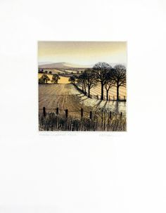 Winter Shadows - Kathleen Caddick, etching