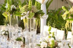 white and green wedding centerpieces   more orchids!~ : wedding orchid centerpieces green pink white ivory ...