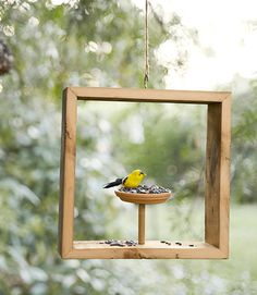 This shadow-box bird feeder is pretty as a picture.