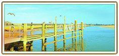 Luigi Speranza -- New England Coast Line