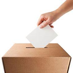 Voting 101 #HowISurvived #UniSurvivalGuide #StudentTips #OnTheBlog Buy Textbooks, Survival Guide, Blog