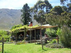 Country Cookhouse in Hermanus Zuid Afrika. Lees alles over dit verborgen plekje / droomconcept in ons artikel. Cape Town, South Africa, Restaurants, Road Trip, Cabin, House Styles, Travel, Everything, Diners