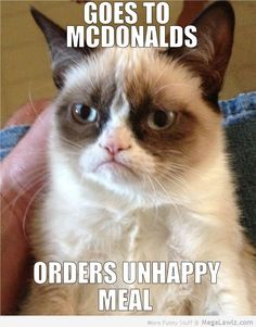 grumpy cat pictures | funny-grumpy-cat-orders-un-happy-meal-at-mcdonalds-pictures-lol