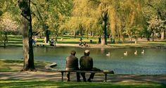 Effervescence Of An Ambiguous Mind: Good Will Hunting (1997): Life and times of Mathematical Fountainhead! - Gus Van Sant - Matt Damon, Robin Williams, Ben Affleck - Genio Ribelle
