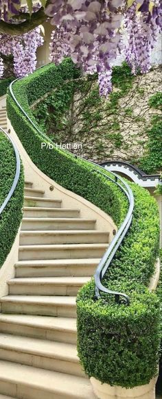Stairs And Doors, Buxus, Garden Gates, Dream Garden, Pathways, Stairways, Garden Inspiration, Beautiful Landscapes, Outdoor Spaces