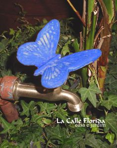Garden Oasis, Garden Pool, Landscape Design, Garden Design, Florida, Garden Types, Outdoor Projects, Gardening Tips, Planting Flowers