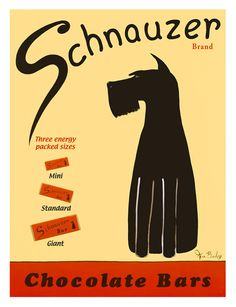 Google Image Result for http://charlottesfancy.files.wordpress.com/2011/07/schnauzer-chocolate-bars-poster-by-ken-bailey.jpg%3Fw%3D525%26h%3D684