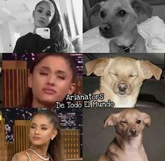 OH GOSH ARIANA IS TOULOUSE <3