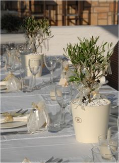 Olive trees potted on tables Grecian Wedding, Tuscan Wedding, Greek Wedding, Rustic Wedding, Olive Branch Wedding, Olive Wedding, Round Wedding Tables, Wedding Table Settings, Wedding Centerpieces
