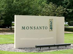 Monsanto's transgenic soy sowing misery in Latin America. RT!