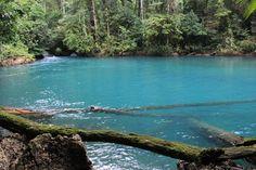 Guatemala~ Parque y Reserva Natural Hun Nal Yé - Coban, Alta Verapaz