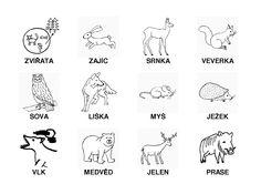 zvířata v lese - Hledat Googlem Forest Animals, Activities, School, Woodland Animals, Woodland Creatures