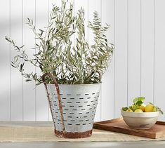 Vintage Olive Bucket #potterybarn