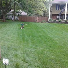 """""""Feed Ur Lawn"""" SPECIAL $19.99* Fertilizer Application - Schedule a FREE Lawn Care Inspection TODAY ! 973-340-LAWN, Garfield, NJ Mosquito Control, Bug Control, Weed Control, Core Aeration, Lawn Service, Lawn Care, Schedule, Free, Timeline"""