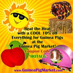 Cool Summer Sale at the Guinea Pig Market! 10% off everything. Limited time. www.guineapigmarket.com