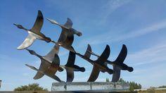 Metal scalpture birds. 2016. By Mehmet ışıklı Antalya Türkiye.