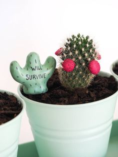 Cactus plant decor 3 funny plant markers I will survive Cool Plants, Cactus Plants, Planting Succulents, Planting Flowers, Plants Are Friends, Plant Markers, Pottery Designs, Diy Planters, Air Dry Clay