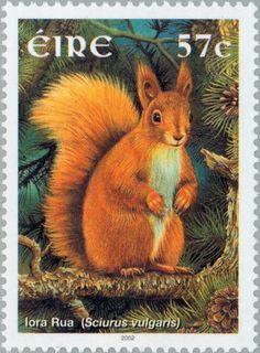Sello: Squirrel (Sciurus vulgaris) (Irlanda) (Animals) Mi:IE 1429,Sn:IE 1401,Yt:IE 1433,Sg:IE 1526