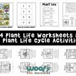 Language Arts Worksheets, Science Worksheets, Reading Worksheets, Worksheets For Kids, Printable Worksheets, English Poems For Children, Kids Poems, Sequencing Activities, Activities For Kids