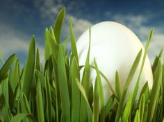 Hierba , huevo , cielo http://www.torange-es.com/Holidays/Easter/Hierba-huevo-cielo-8140.html Banco de fotos www.tOrange-es.com libre y gratuita Hierba , huevo , cielo  Tags - #Pascua #Decoración #dios #Recuerdo #Templo #pintado #viejo #convenio #cielo #hierba #biblia #Ortodoxia #Cristianismo #Huevo #pintura #fiesta #Domingo #día #Cristiano #Navidad #Huevos #Krashenki #teñido #Cristo #huevos