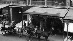 Dymocks Book Arcade in Sydney in 1900. 🌹