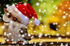 Merry Christmas Wishes, Christmas Messages Christmas Greetings Merry Christmas Wishes, Christmas Owls, Merry Xmas, Christmas Greetings, Christmas Holiday, Winter Holiday, Holiday Cards, Christmas Cards, Christmas Decorations