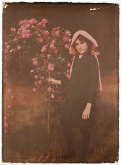An autochrome of a young girl standing in a garden next to some rambling roses, taken by Etheldreda Janet Laing (1872-1960) in about 1910.