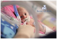 NICU photographer blog