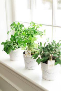 DIY Home Gifts   POPSUGAR Home