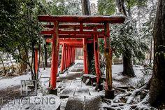Shrine covered in snow in Saitama, Tokyo, Japan