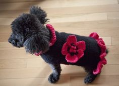 Wool dog sweater with anemone flower by pulldog on Etsy, $45.00
