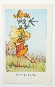 Bird's Foot Trefoil Fairy, Flower Fairy, from PeonyandThistlePaper £4.50