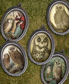 Owls - Cameo-Size Oval Images