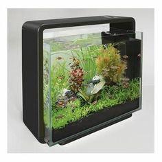 Aquarium équipé avec LED et filtre Superfish Aquascaping Home 40 noir. Aquarium équipé au design élégant et tendance.  Volume brut : 40 Litres. Dim. : 47 cm x 25 cm x H. 42