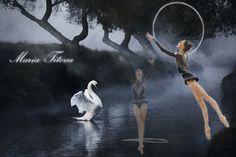 maria-titova-the-swan-walls-by-hershey.jpg (960×641)