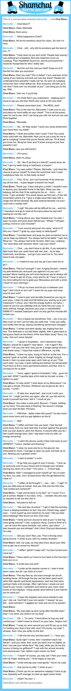 A conversation between Chat Blanc and Marinette ♡