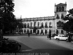Plaza del duque. Palacio del Marqués de Palomares y palacio de los Sánchez-Dalp.
