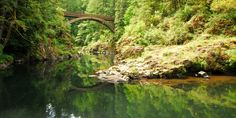 Deep waters just above Moulton Falls.- Oregon's 30 Best Swimming Holes