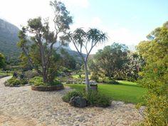 Jardin de Kirstenbosch - Cape Town - Afrique du Sud