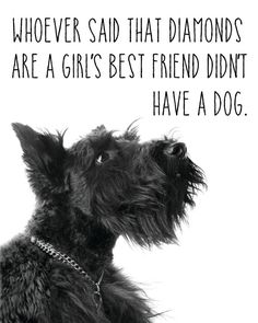 Black Scottish Terrier Print / Dog Quote Print / by MadKittyMedia